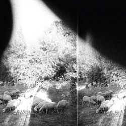 Godspeed You! Black Emperor -