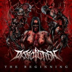 Dissolution - The Beginning