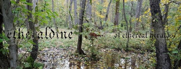 www.echoes-zine.cz/files/editor/Victimer/etheraldine%20.jpg